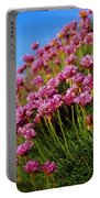 Ireland Close-up Of Seapink Wildflowers Portable Battery Charger