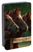 Ireland Thoroughbred Horses Portable Battery Charger