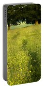 Ireland Trail Through Buttercup Meadow Portable Battery Charger