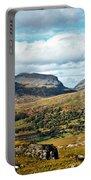 Irish Landscape 100 Portable Battery Charger