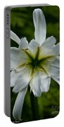 Ivory Star Portable Battery Charger