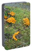 Jack Olantern Mushrooms 15 Portable Battery Charger