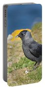 Jackdaw Gathering Nesting Materials Portable Battery Charger