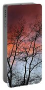January Sunset Silhouette Portable Battery Charger