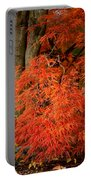 Japanese Maple In Autumn Portable Battery Charger