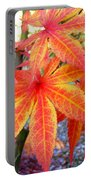 Japanese Maple Leaves 13 In The Fall Portable Battery Charger