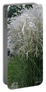 Japanese Silver Grass Full Height Portable Battery Charger