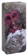 Japanese Snow Monkey Portable Battery Charger