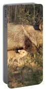 Javalina And Baby Portable Battery Charger