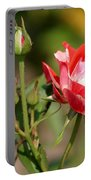 Jh Pierneef Rose Portable Battery Charger