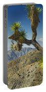 Joshua Trees Number 357 Portable Battery Charger