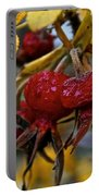 Juicy Rose Hips Portable Battery Charger