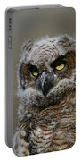 Juvenile Great Horned Owl Portable Battery Charger
