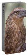 Juvenile Sea Eagle Portable Battery Charger