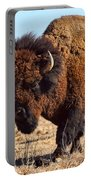 Kansas Buffalo Portable Battery Charger