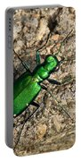 Keen Green Portable Battery Charger