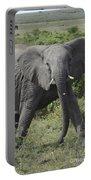Kenya Masai Mara Charging Elephant  Portable Battery Charger