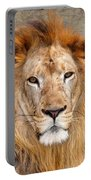 King Of Beasts Portrait Of A Lion Portable Battery Charger
