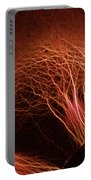 Kirlian Photograph Portable Battery Charger