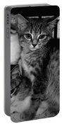 Kittens Corner Portable Battery Charger