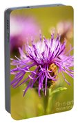 Knapweed Flower Portable Battery Charger