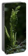 Lacy Wild Alabama Fern Portable Battery Charger
