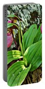 Lady Slipper I Portable Battery Charger