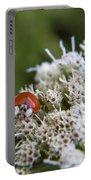 Ladybug Atop The Flowers Portable Battery Charger