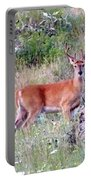 Lake Country Buck Portable Battery Charger