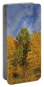 Lake Tahoe Aspen Sky Portable Battery Charger