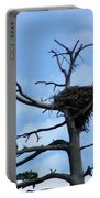 Lake Tahoe Eagle Nest Portable Battery Charger