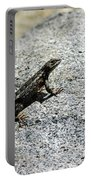 Lake Tahoe Lizard On A Hot Rock Portable Battery Charger
