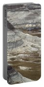 Landscape Petrified Forest Portable Battery Charger