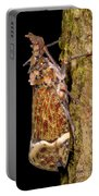 Lantern Fly Portable Battery Charger