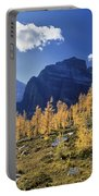 Larch Trees From The Saddleback Trail Portable Battery Charger