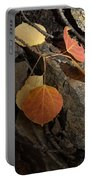 Last Vestige Of Fall Portable Battery Charger