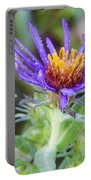 late Summer Fleabane Portable Battery Charger