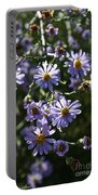 Lavender Ladies Portable Battery Charger