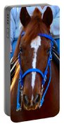 Lead Horse Portable Battery Charger