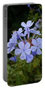 Leadwort Portable Battery Charger
