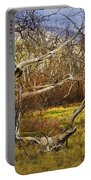 Leaf Barren White Tree Trunk In California No.1500 Portable Battery Charger