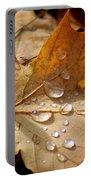 Leaf Doplets Portable Battery Charger by LeeAnn McLaneGoetz McLaneGoetzStudioLLCcom