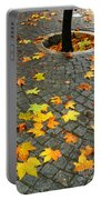 Leafs In Ground Portable Battery Charger