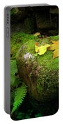 Leafs On Rock Portable Battery Charger