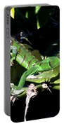 Leapin Lizards Portable Battery Charger