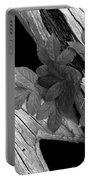 Leaves And Driftwood Bw Portable Battery Charger