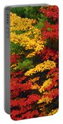 Leaves On Trees Changing Colour Portable Battery Charger