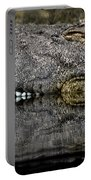 Let Sleeping Crocs Lie Portable Battery Charger