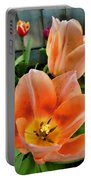 Lets All Dance For The Tulips Are Out Portable Battery Charger