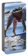 Let's Surf Dude Portable Battery Charger